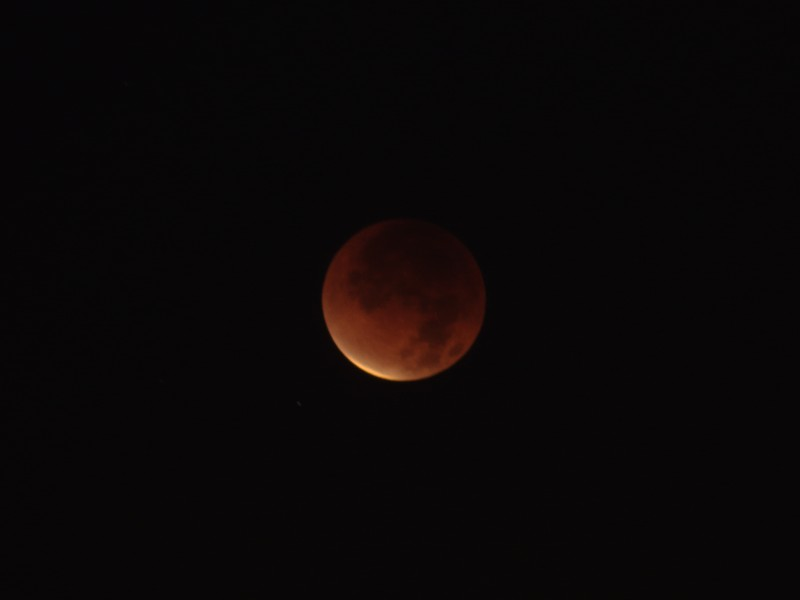 Dec. 2011 Lunar Eclipse