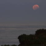 Partially Eclipsed Moonset
